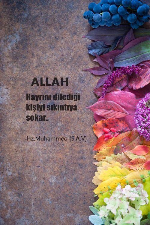 Allah hayrını dilediği…