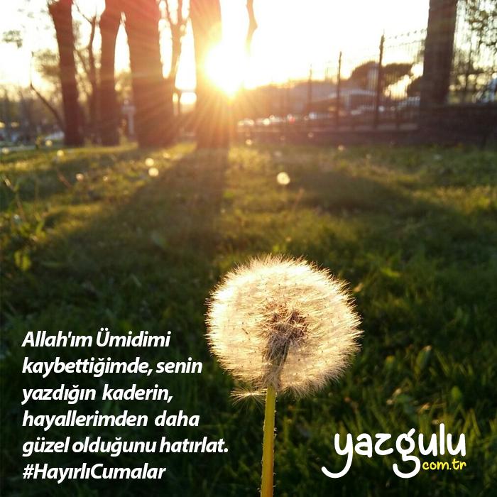 Allah'ım Ümidimi kaybettiğimde, senin yazdığın kaderin, hayallerimden daha güzel olduğunu hatırlat.