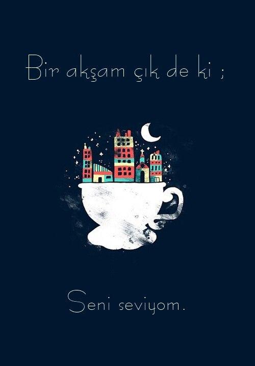 Bir akşam çık de ki: Seni seviyorum..